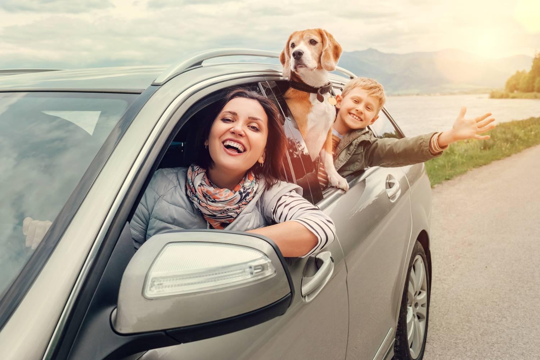Сколько стоит страховка на машину в 2021 неограниченая
